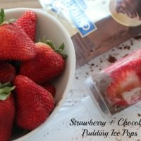 Strawberry + Chocolate Pudding Ice Pops