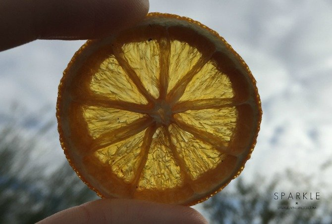 Dried Orange