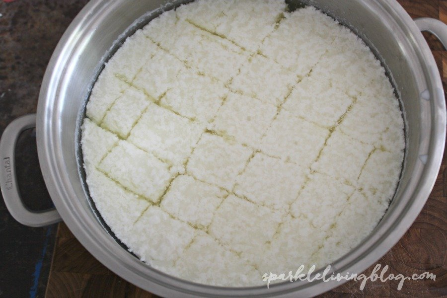 Homemade Mozzarella - Have you tried making your own cheese? I was was a little scared, but I did it and it was awesome!