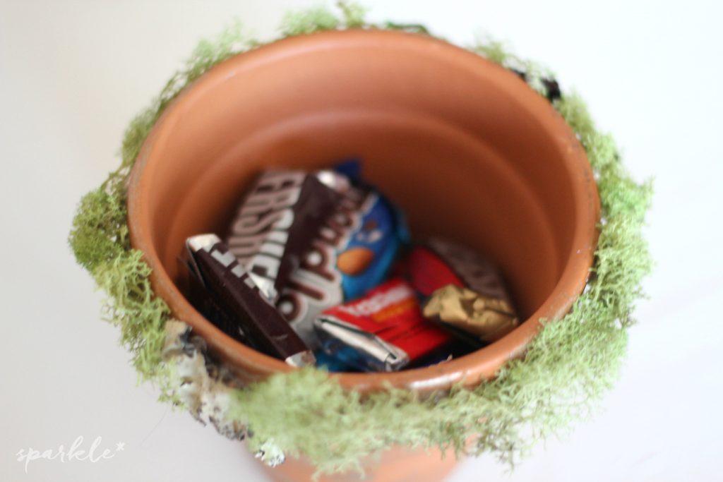 Felt succulent flower pot gifts