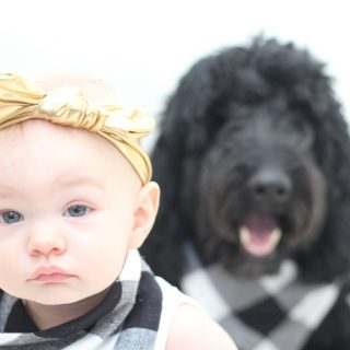 Matching baby and dog bibs. Quick and easy DIY for photo props!