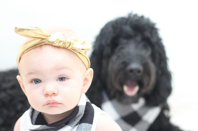 Matching Baby And Doggie Bibs For Photo Props