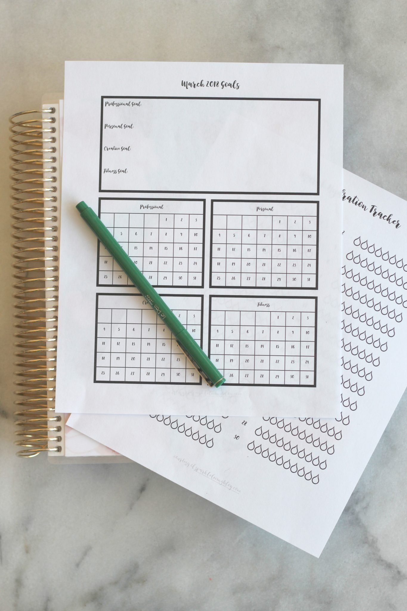 image regarding Goal Tracker Printable identified as Setting up Your Cheat Working day - March Ambitions and Drinking water Tracker