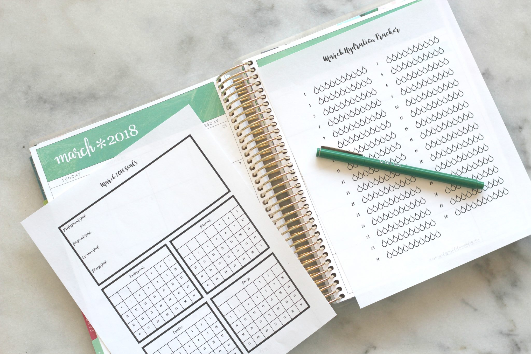 Stay on track of your goals with this free printable goal tracker for March 2018 and hydration tracker!