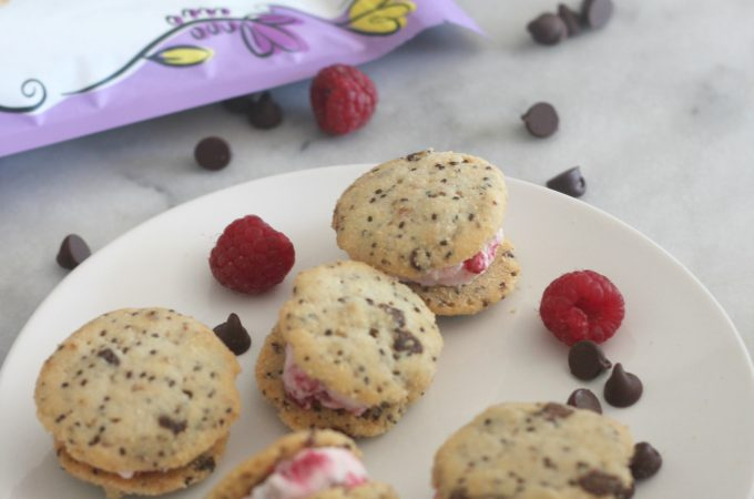Raspberry Chocolate Chip Frozen Yogurt Chia Cookie Sandwiches
